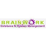 brainwork database system