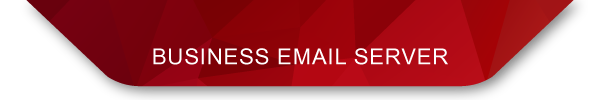 BUSINESS EMAIL SERVER